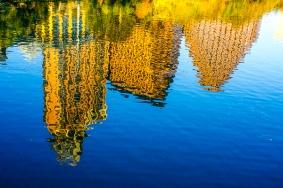 On the Lake, Austin by Jann Alexander © 2013