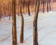 Trees in the Snow by Jann Alexander © 2014