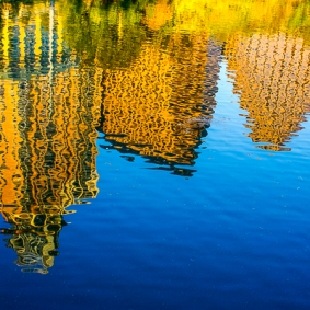 Lake-Austin-Reflections-photo-by-Jann-Alexander-©2010