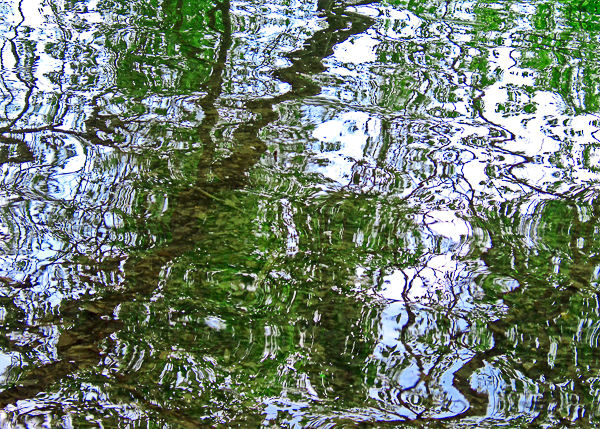 Wavy Barton Reflections by-Jann-Alexander-©2013