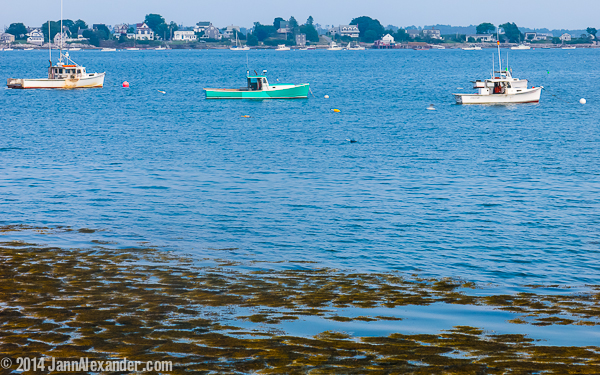 Lobster Boats in Maine