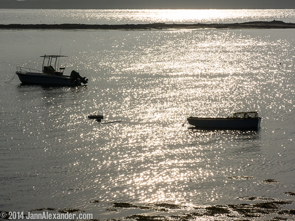 A Monochrome Moment in Maine by Jann Alexander ©2014