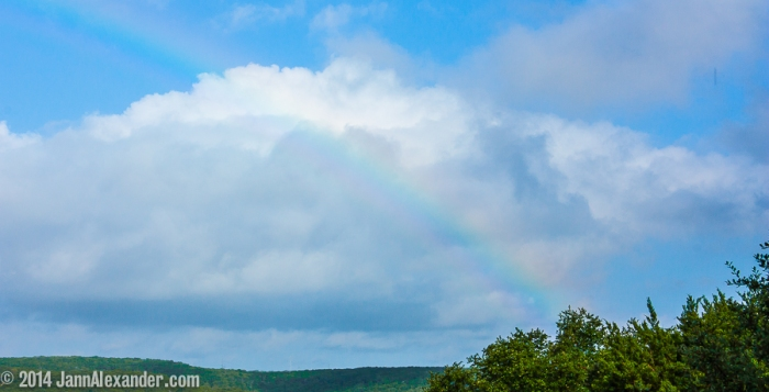 That Wily Rainbow by Jann Alexander ©2014-6817