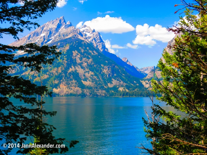 Jenny Lake View by Jann Alexander ©2014-1615