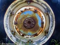 Rusty Wheel by Jann Alexander ©2014