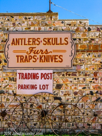 Antlers: Signs of Changing Times by Jann Alexander ©2014