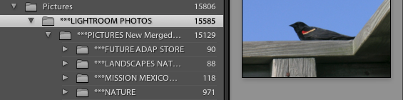 15,585 Photos in My Library