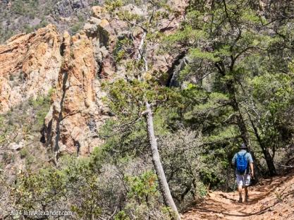 The Trail Down by Jann Alexander ©2014