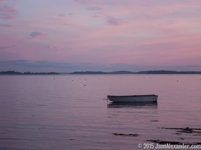 Mono Moment in Maine by Jann Alexander ©2015