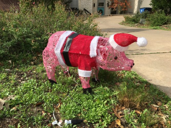 Santa Pig | iPhoneography by Jann Alexander ©2016